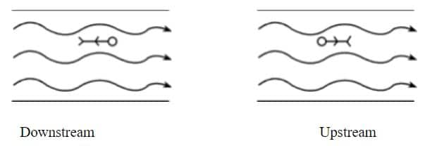 Kinematics Class 11
